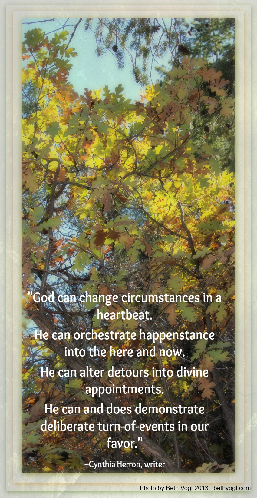 In Others' Word: Circumstance | Beth K  Vogt